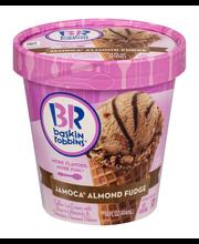 Baskin Robbins Ice Cream Jamoca Almond Fudge