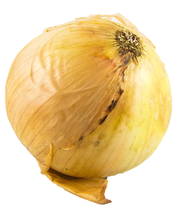 Organic Onion Yellow Jumbo