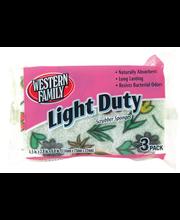 Wf Scrubber Light Duty Large