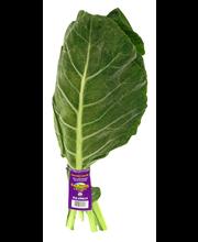 Collard Greens Organic