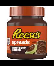 Reese's® Peanut Butter Chocolate Spreads 13 oz. Jar