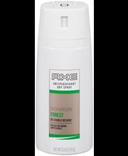 AXE® Signature Forest Dry Spray Antiperspirant 3.8 oz. Aeroso...