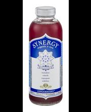 Synergy Organic &  Raw Gingerberry Kombucha