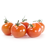 Plum Tomatoes/USA