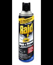 Raid® Wasp & Hornet Killer 14 oz. Aerosol Can