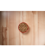 Purina ONE SmartBlend True Instinct Tender Cuts in Gravy with...