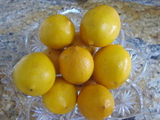 Meyer_lemons_for_curd0001