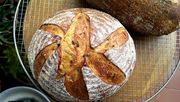Saffron_and_truffle_sd_bread_with_sunflower_seeds_boule_top_view
