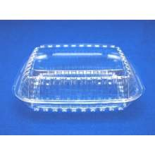 Ops Plastic Clear Seal Hinged Lid Container