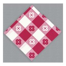 2 Ply Red Gingham Printed Everyday Beverage Napkin 10 x 10 in - Coin Embossed 4 packs of each 250