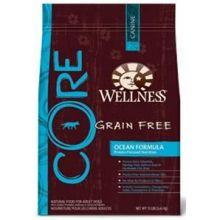 Wellness Now Core Grain Free Ocean Formula Dry Dog