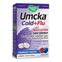 Berry Cold Plus Flu Chewable Tablets