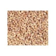 UNFI Organic Hulled Barley 1 Pound