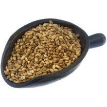 UNFI Organic Hulless Barley 1 Pound