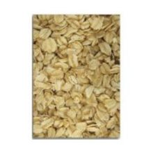 Grain Millers Organic Regular Rolled Oat 50 Pound