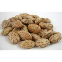 UNFI Organic Pinto Beans 1 Pound