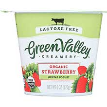Lactose Free Strawberry Yogurt