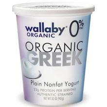 Organic Plain Greek Nonfat Yogurt