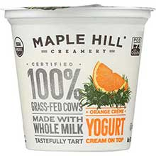 Organic Orange Yogurt