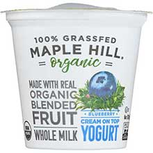 Organic Blueberry Yogurt