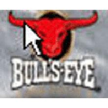 Bulls Eye Barbecue Sauce