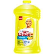 Summer Citrus Liquid All Purpose Antibacterial Cleaner