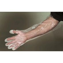 Polyethylene Large Clear Glove