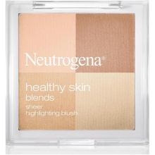 Healthy Skin Blends Translucent Oil Control Powder