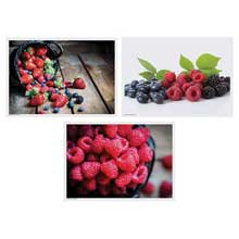 3 Designs Berry Delight Paper Placemat