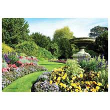 English Garden Paper Placemat