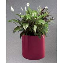 The Barclay Series Fiberglass M Model Round Rimless Planter 5 inch Height 7 inch Diameter