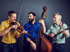 Beneath The Arch: Lonesome Ace Stringband Images