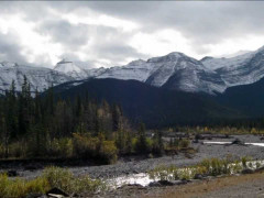 Bragg Creek Images