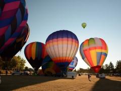 Heritage Inn International Balloon Festival Images