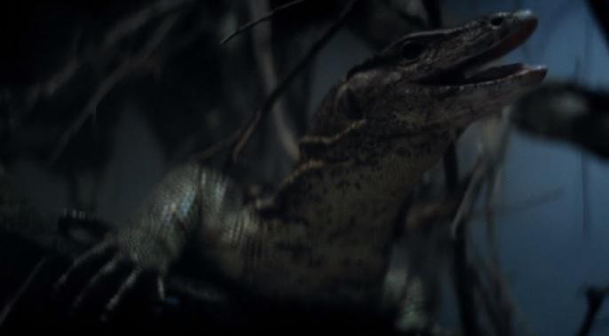 https://s3.amazonaws.com/forceanddestiny/dagger-lizard.jpg