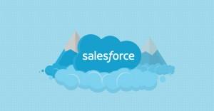 A Beginner In Salesforce?