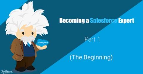 Becoming a Salesforce Expert – Part 1
