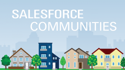Salesforce Communities and Licenses