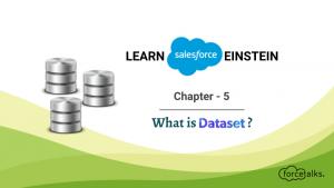 Learn Salesforce Einstein – Chapter 5 (What is DataSet?)