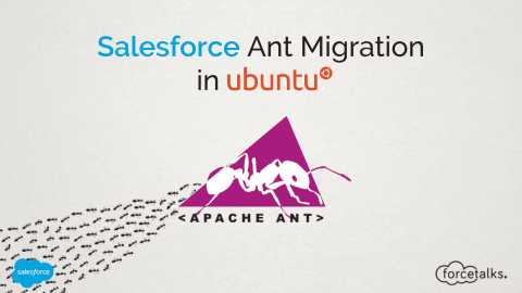 Salesforce Ant Migration Ubuntu