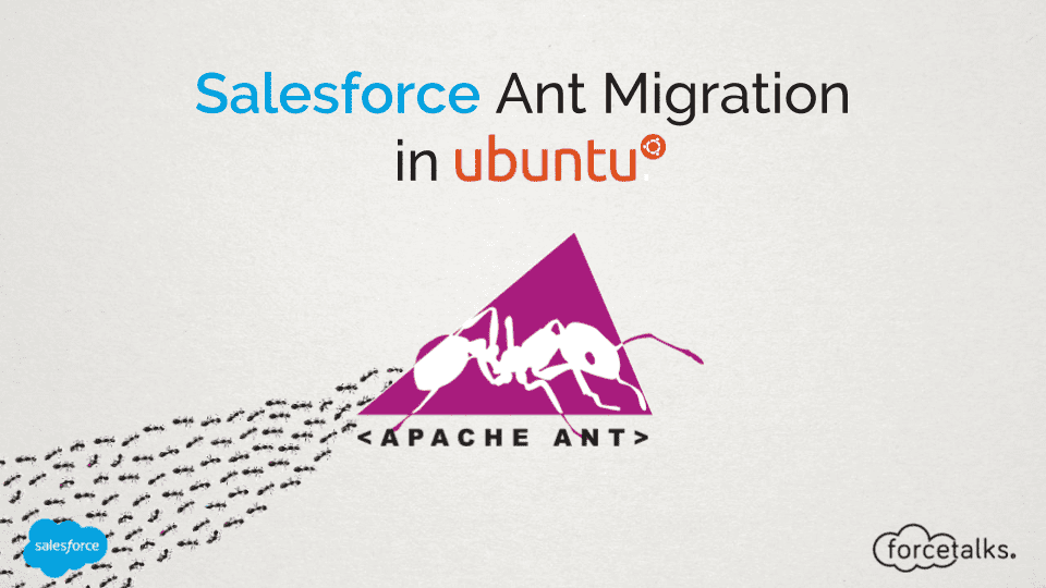 Salesforce Ant Migration Ubuntu