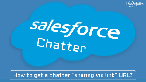 "How to get a chatter ""sharing via link"" URL?"