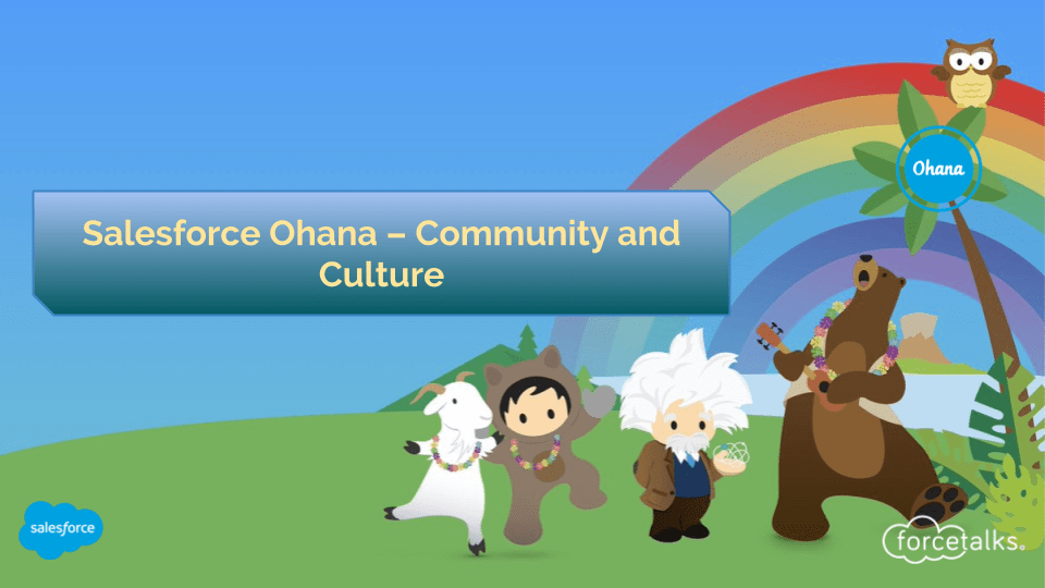 Salesforce Ohana – Community and Culture