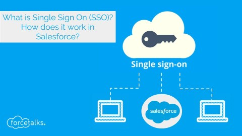 What is Single Sign On (SSO)? How does it work in Salesforce?