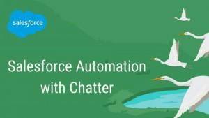 Salesforce Automation with Chatter