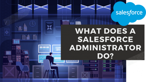 Know All About the Role of Salesforce Administrator