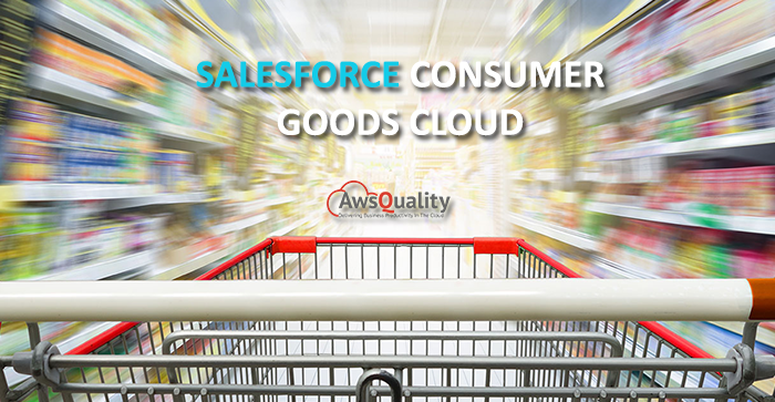 An Introduction to Salesforce Consumer Goods Cloud