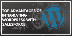Top Advantages of Integrating WordPress with Salesforce