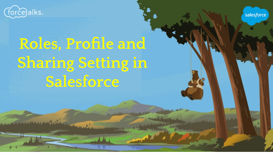 sharing setting in salesforce
