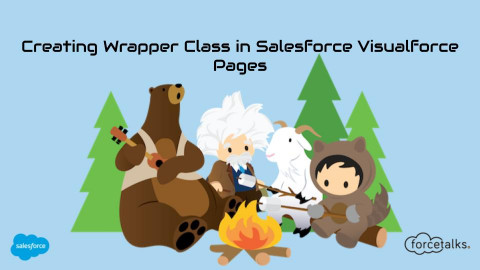 Creating Wrapper Class in Salesforce Visualforce Pages